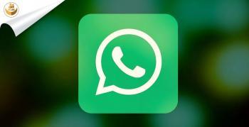 Whatsapp Bilgi ve Belge Gönder Hattı